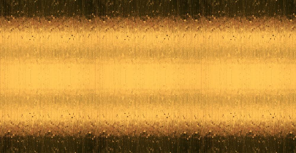_DSC0285sm.jpg