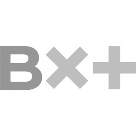 BX-logo.jpg