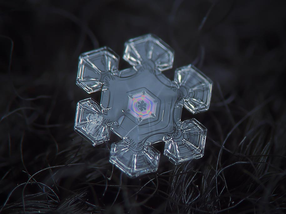 snowflake-closeup-diy-setup-alexey-kljatov-11.jpg