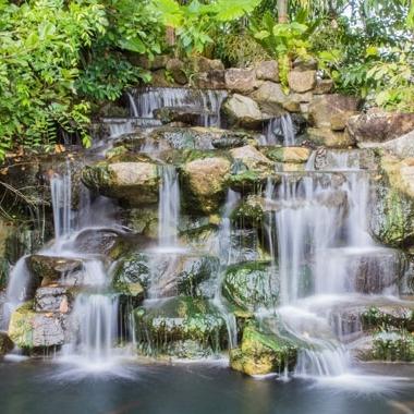 Bon Botanical Garden