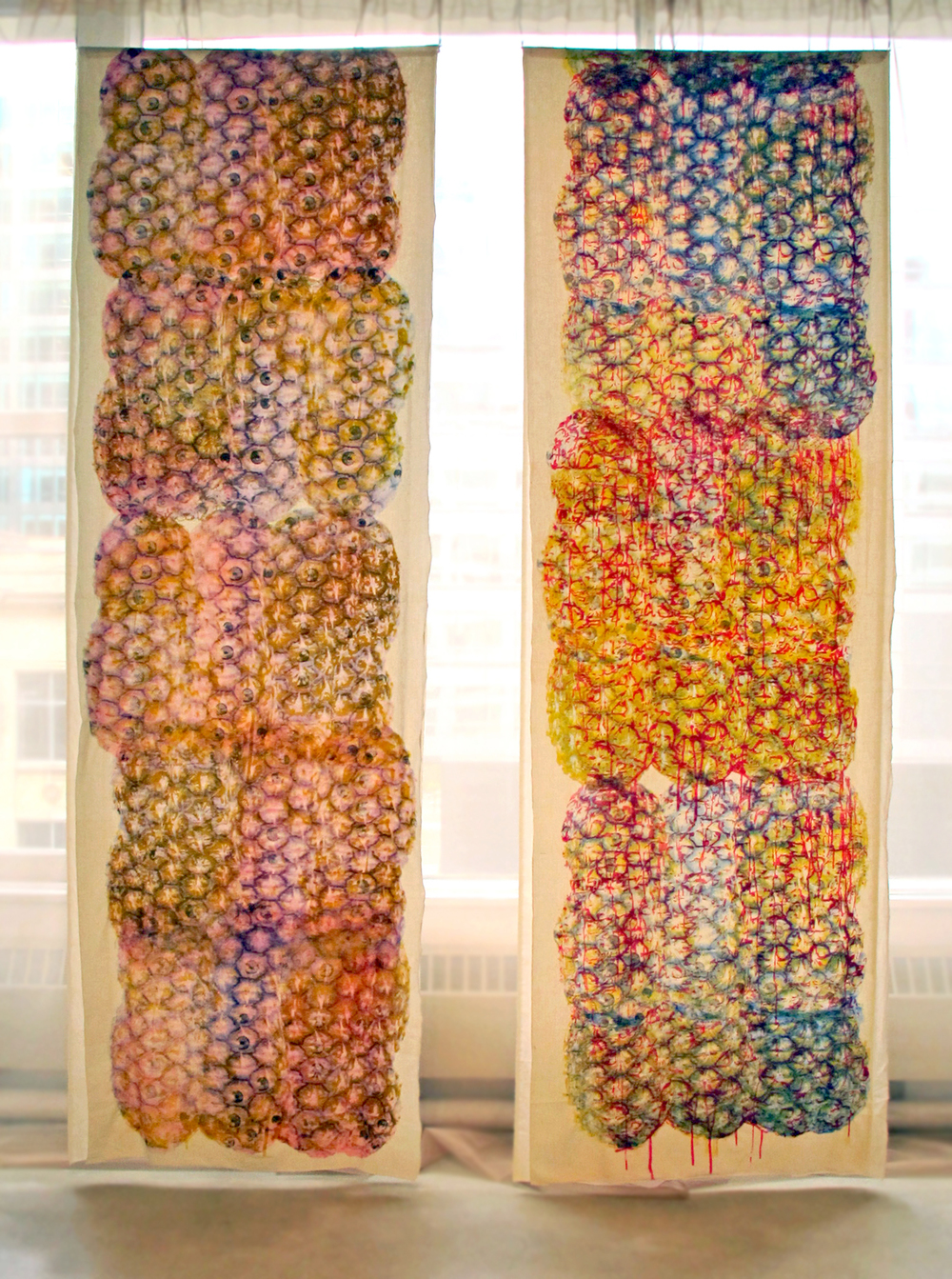 """Perspectival Perceptions  , 2014.Silkscreen on muslin and synthetic organza, 38"""" x 116"""" (each)"""