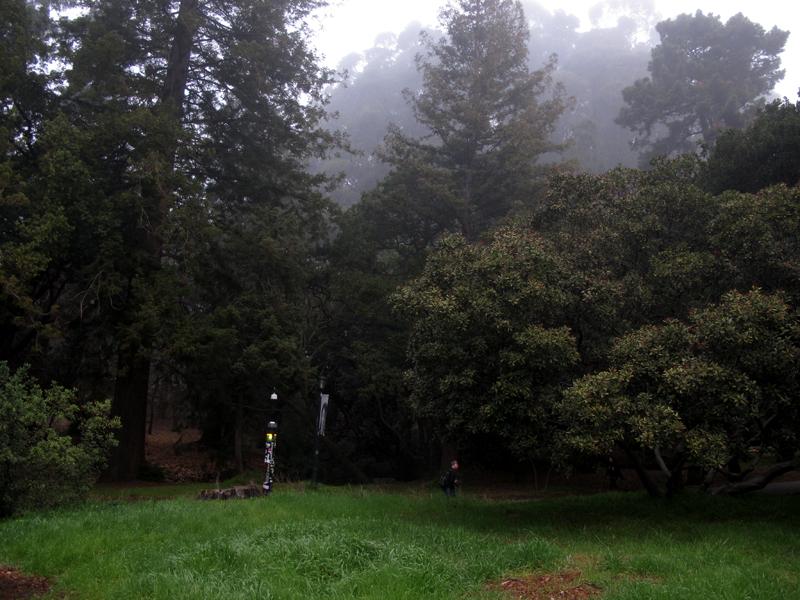 February 1, 2011   Light morning fog.
