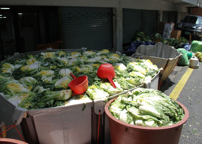 Before they became kimchi. Seoul, Korea.