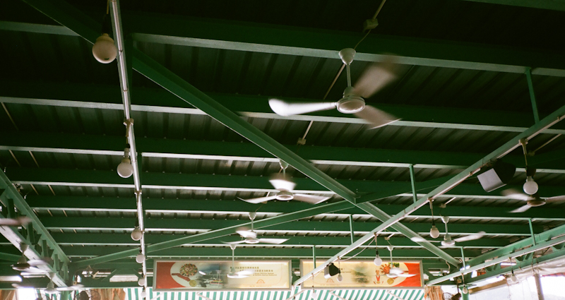 Ceiling fans, Lamma Island.