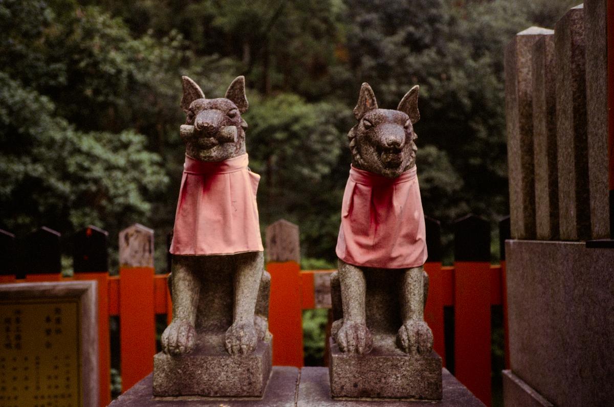 #kyoto