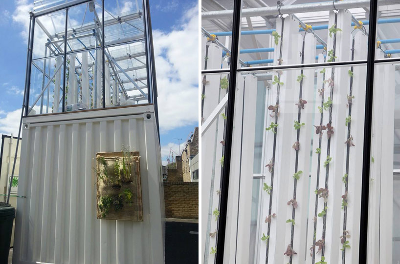 growupbox-aqua-ponic-farm-london-designboom04