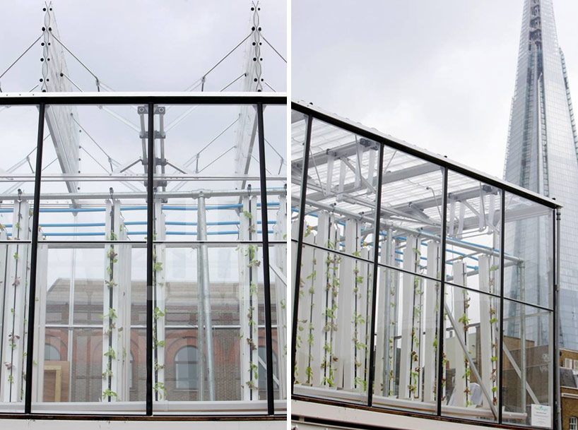 growupbox-aqua-ponic-farm-london-designboom05