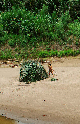 uncontacted-mashco-piro-indian-woman-spotted-from-the-air-s.e.-peru-2007.jpg