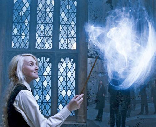 Luna's patronus is a rabbit.