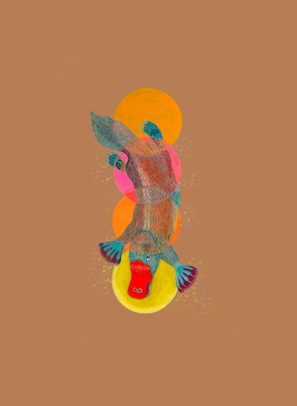 """Undine  Elementals  Undine Gnome Sylph Salamander   16"""" x 22"""""""