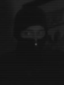 as 'Pokémon Burglar' (2015)
