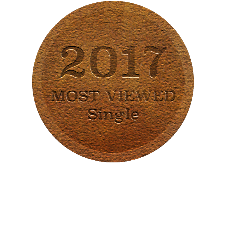 2017BronzeMedal-Single.png