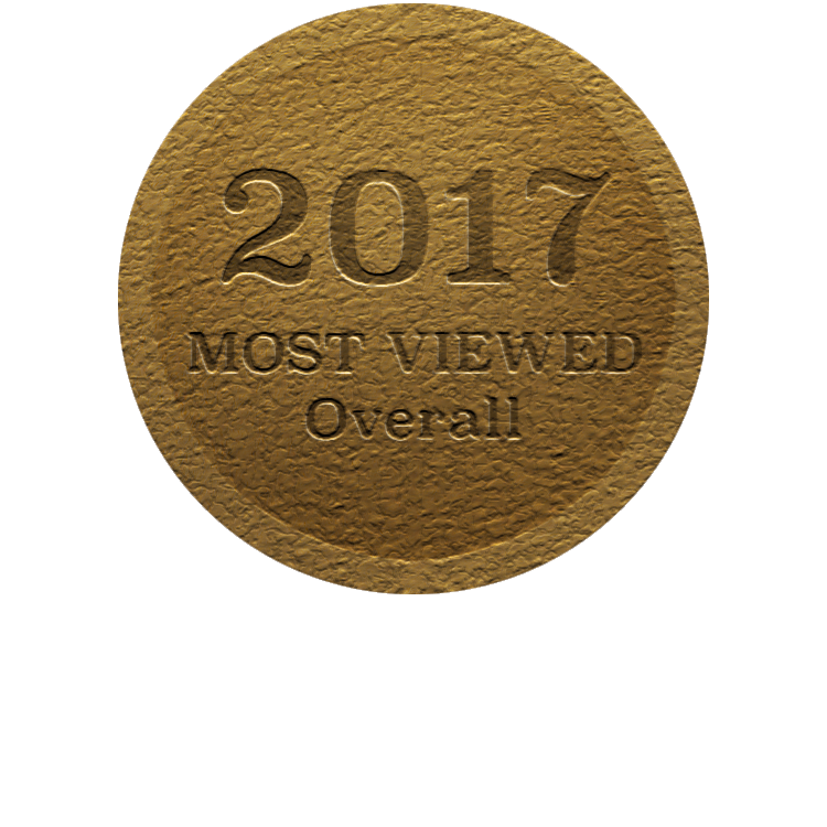 2017GoldMedal-Overall.png
