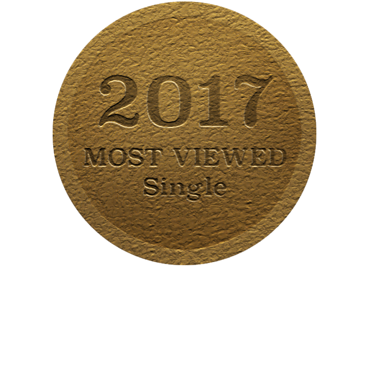 2017GoldMedal-Single.png