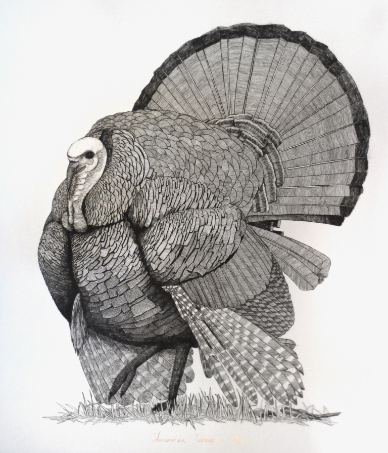 'American Turkey in Paris #2'