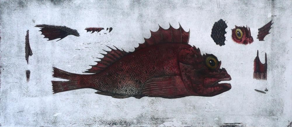 'Scorpion Fish'