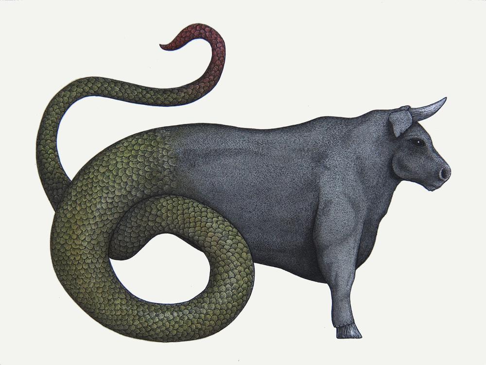 'The Ophiotaurus'