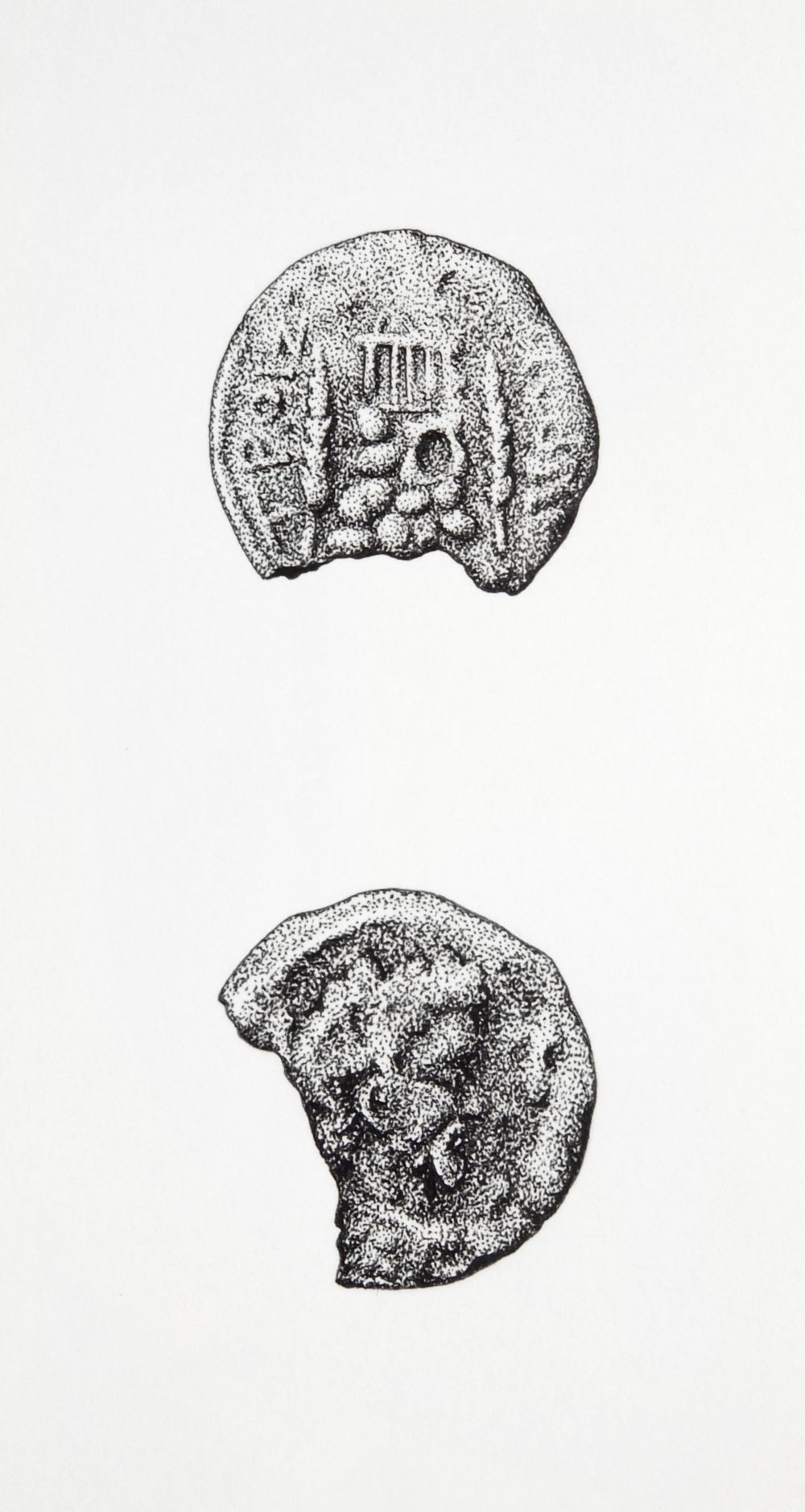 'Coin From Troizen'