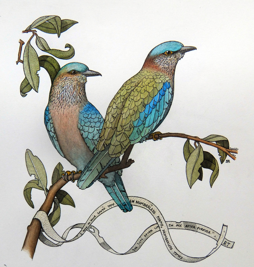 'Indian Rollers'