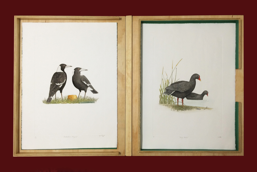 'The Birds of New Holland' Folio