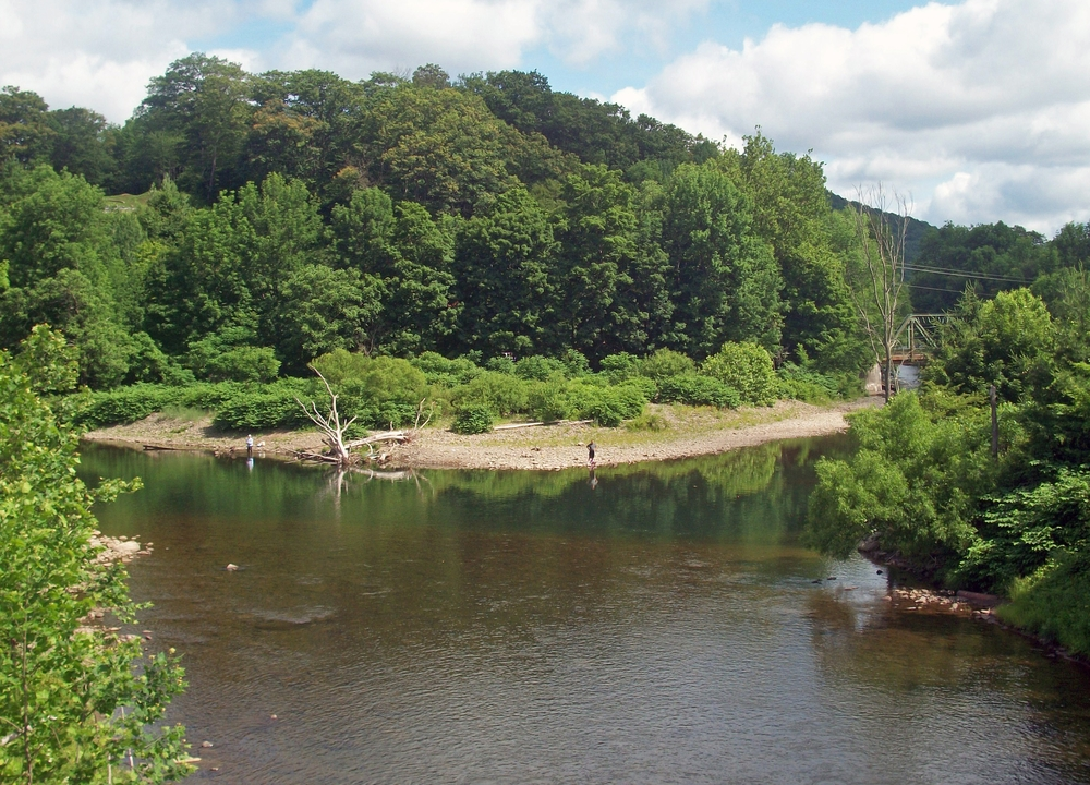 Beaverkill River