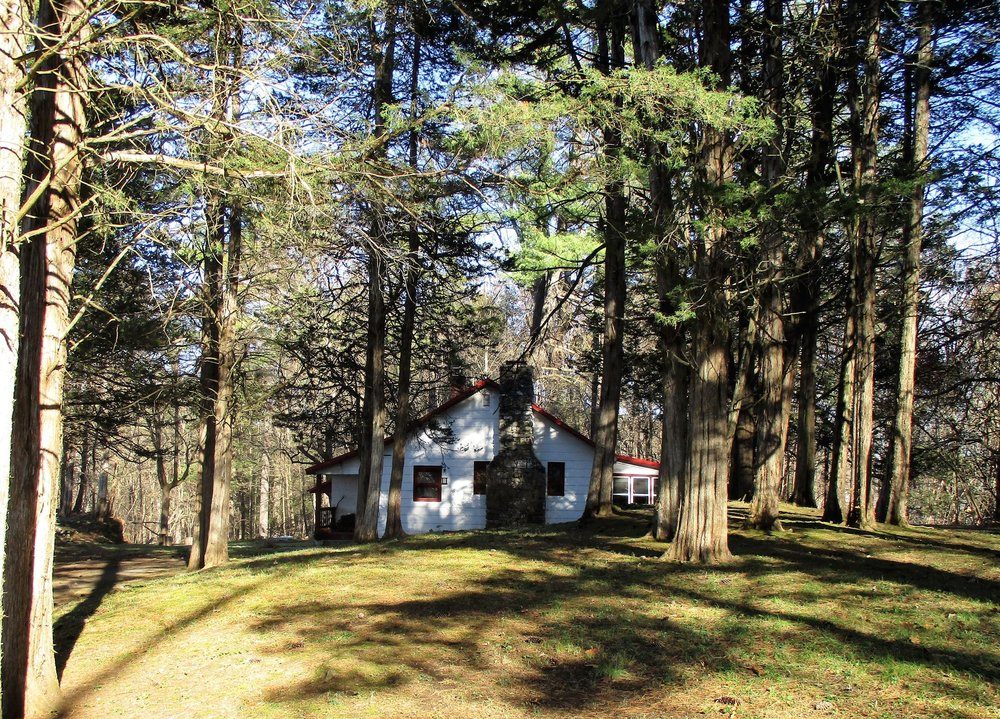 1. cottage in a cedar grove.jpg