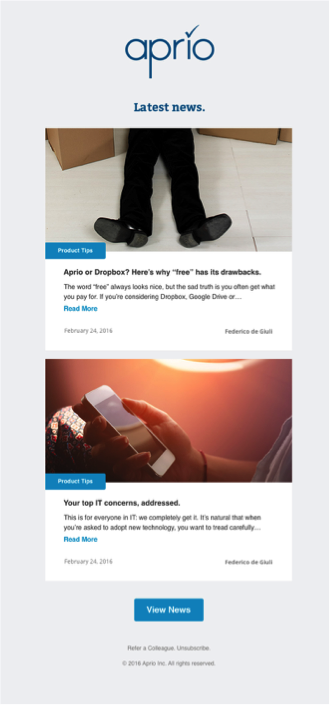 blog email campaign