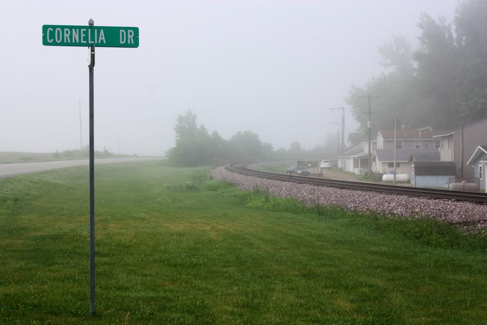 foggy corneila drive_tonemapped.jpg