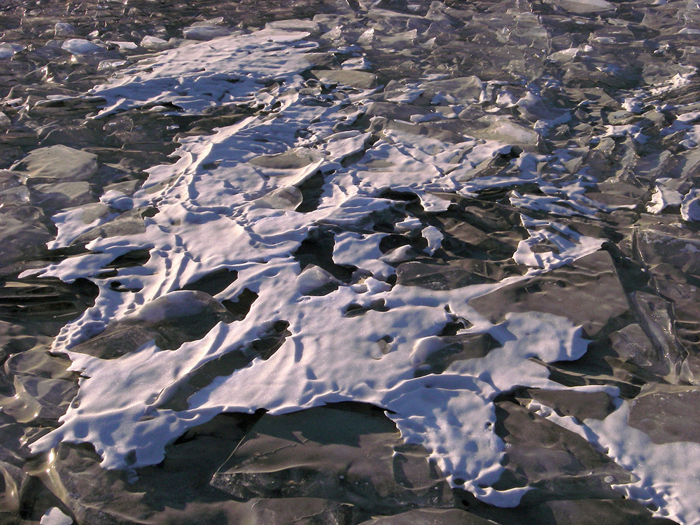 Windblown snow crust forms a skeletal shape on-top of frozen ice-plates in Lake Lucille. 2012