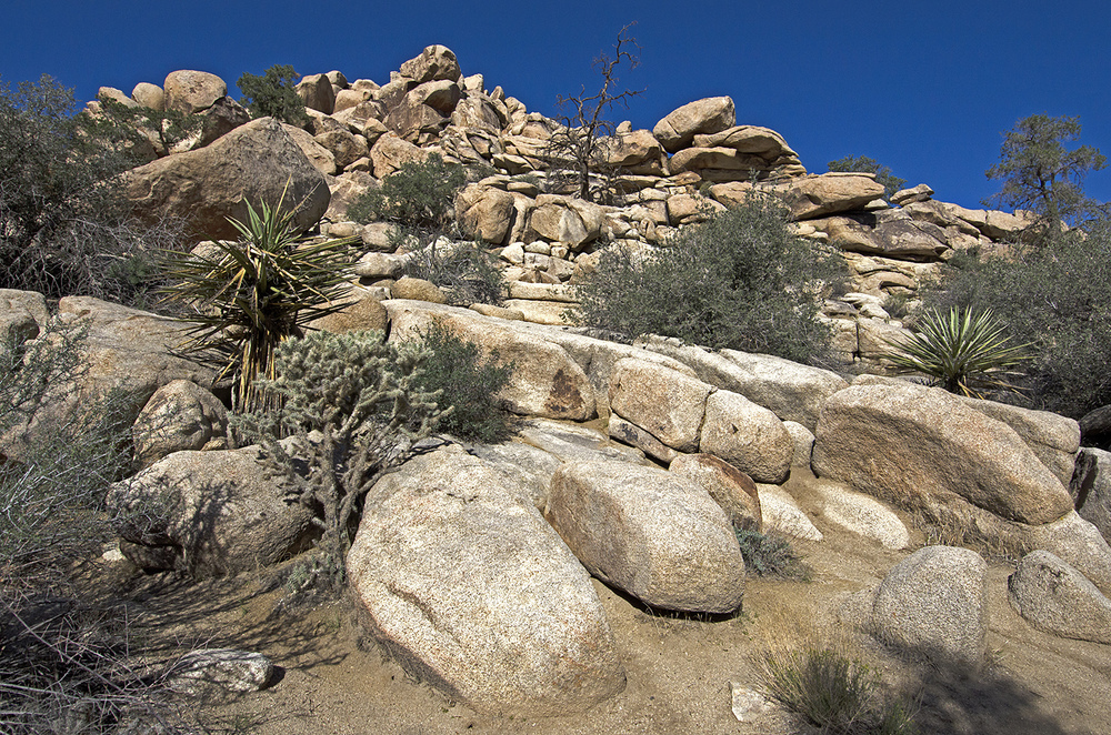 Lots of interesting boulders along the route to photograph and climb.