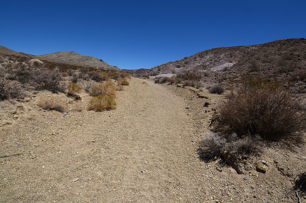 Even without stones lining the trail, it's pretty easy to stay on the right path.