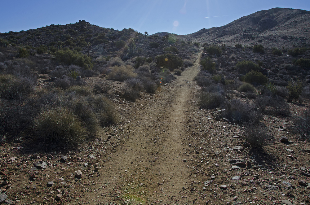Following the old wagon road. Notice the vegetation in the foreground, it will change dramatically just up ahead.
