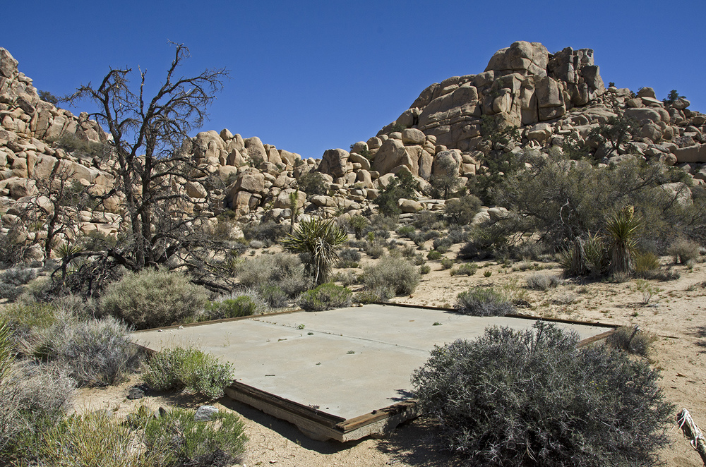 A storage shed probably once stood atop this cement pad.