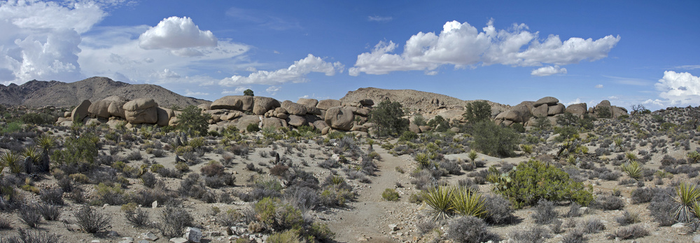 The pile of boulders that marks Pine City. You can also see some of the large Pinyon Pines it was named after.