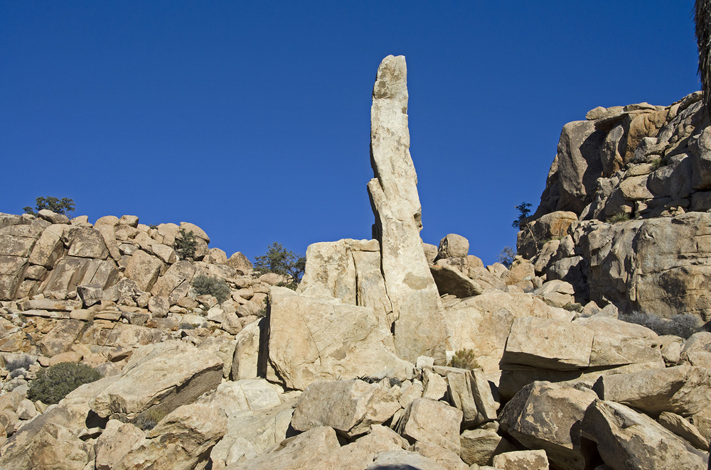 Full Frontal view of the Aiguille de Joshua Tree