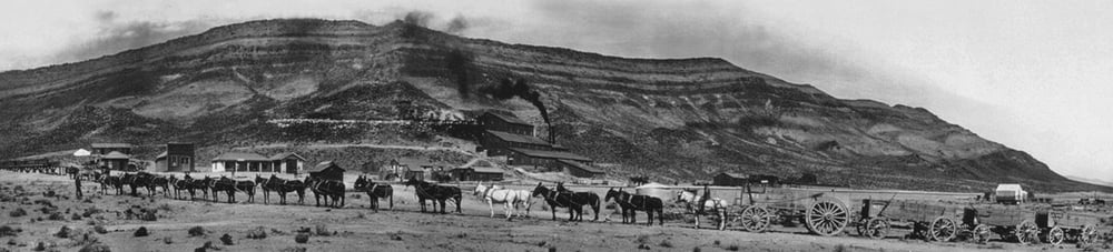20+ Mule Team in front of Bonnie Claire, date unknown.