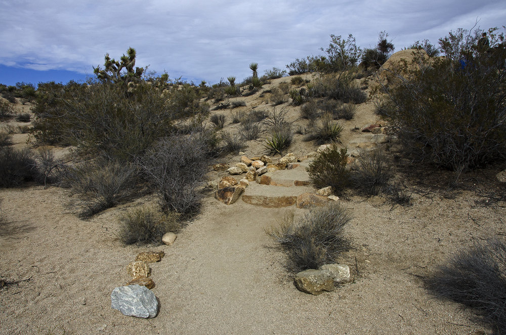 Skull Rock Trail - Joshua Tree NP 03