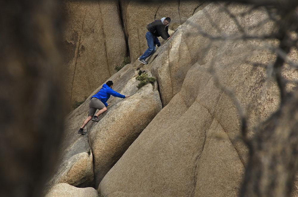 Skull Rock Trail - Joshua Tree NP 12