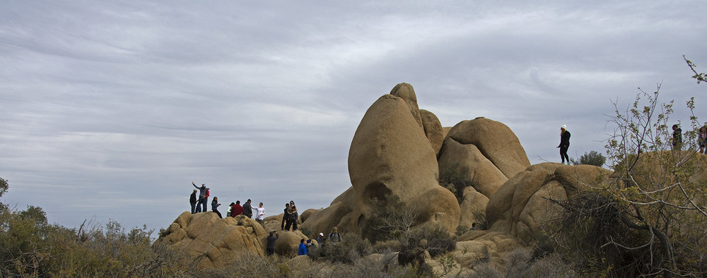 Skull Rock Trail - Joshua Tree NP 13
