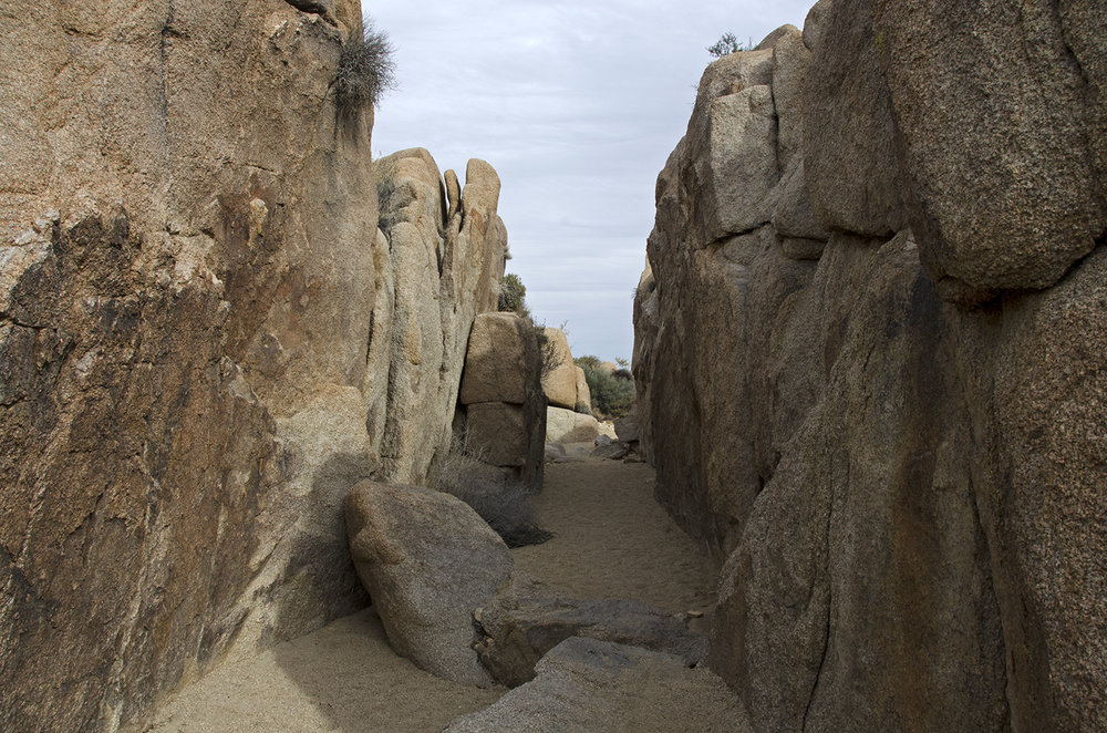 Skull Rock Trail - Joshua Tree NP 16
