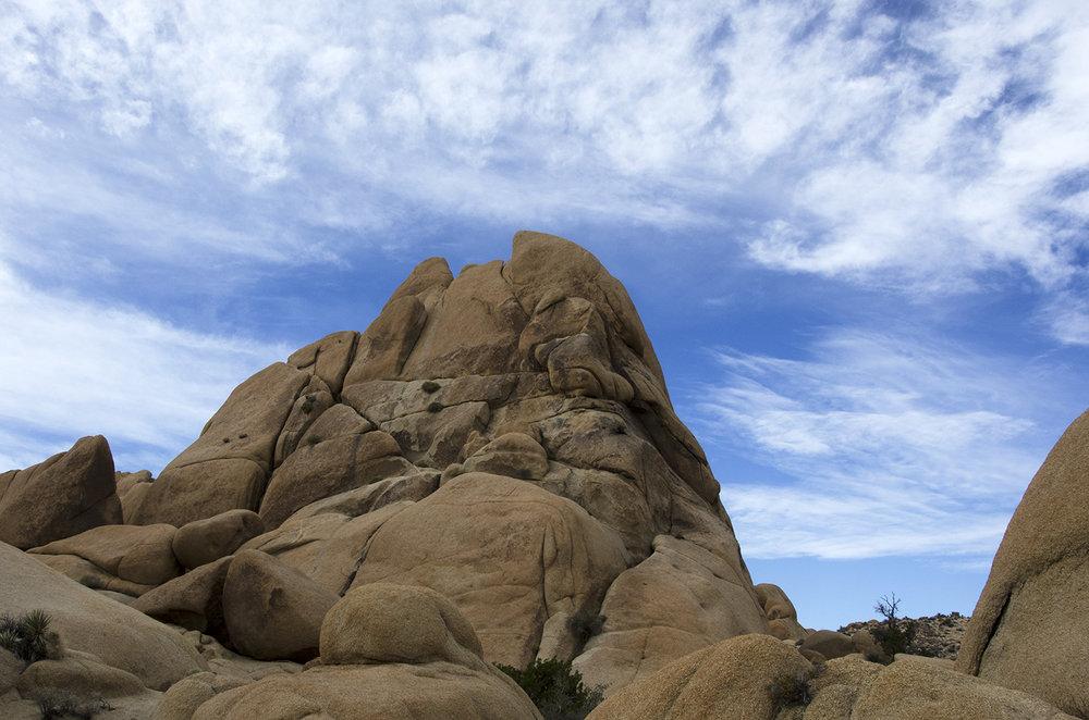 Skull Rock Trail - Joshua Tree NP 23