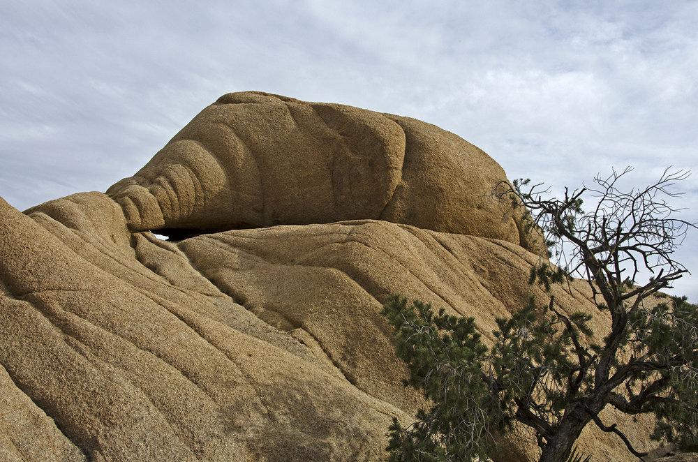 Skull Rock Trail - Joshua Tree NP 24