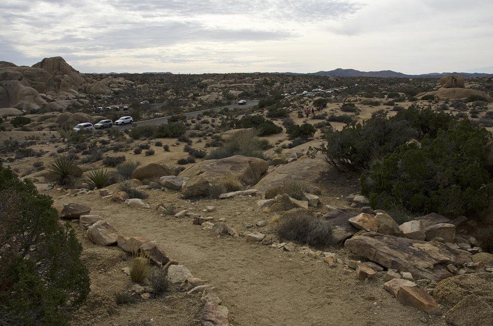Skull Rock Trail - Joshua Tree NP 28