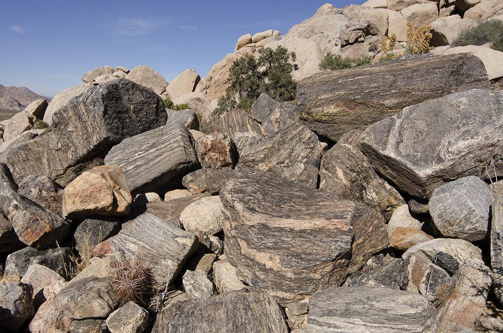 Joshua Tree NP - Oyster Bar 10.jpg