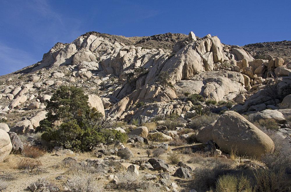 Joshua Tree NP - Oyster Bar 27 Cowboy Crags.jpg