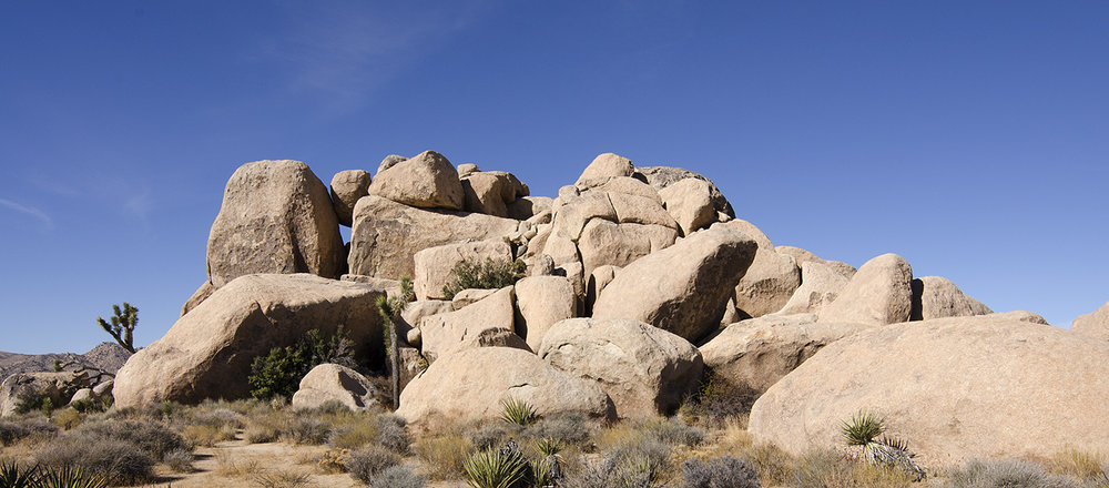 Joshua Tree NP - Planet X Area 06.jpg