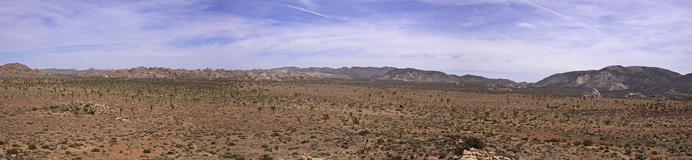 Lost Horse Valley Joshua Tree NP 015 pano.jpg