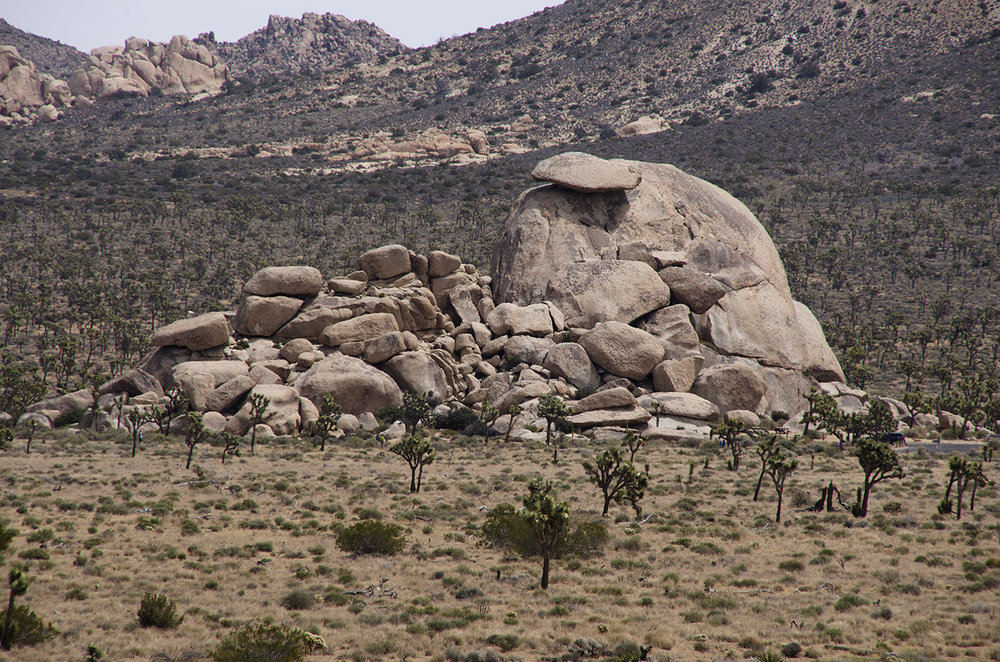 Lost Horse Valley Joshua Tree NP 021.jpg