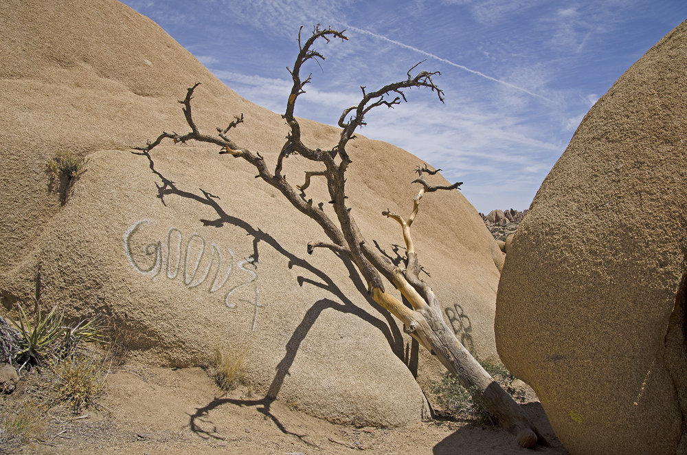 Joshua Tree National Park 022 Graffiti.jpg