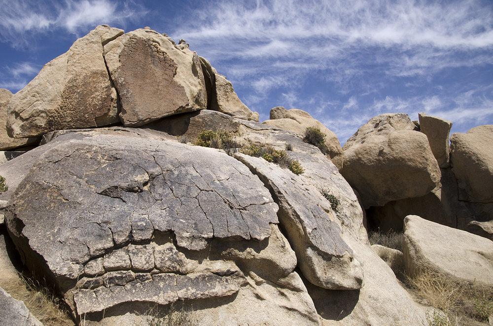 Joshua Tree National Park 017 T Rex Fossill.jpg